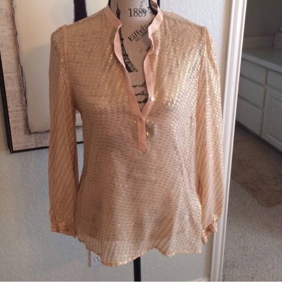 282dcb48468709 Zara Blush Pink Metallic Gold Silk Blouse Small